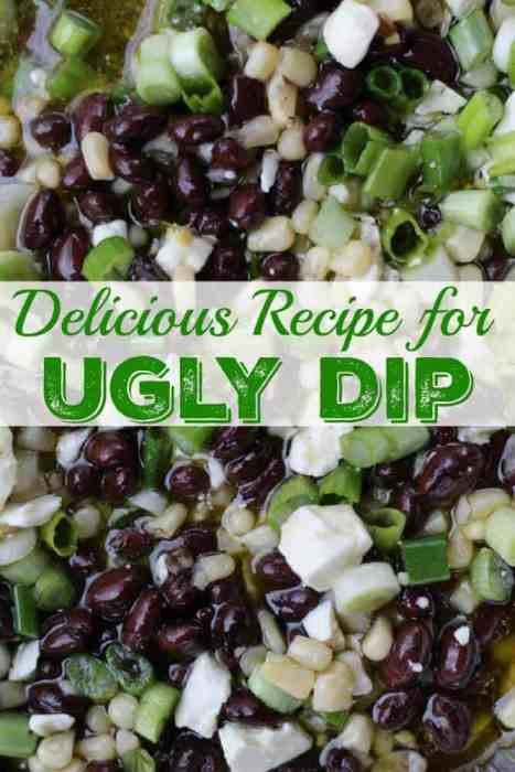 A delicious recipe for ugly dip with black beans, white corn, scallions and feta cheese. It's a good dip for pot lucks and parties.
