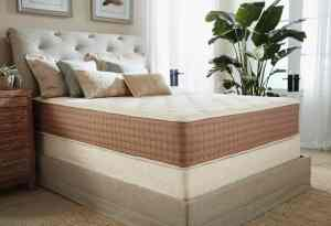 The eco terra latex mattress