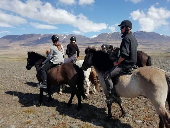 Jízda na islandských koních s Hestasport ve Varmahlidu