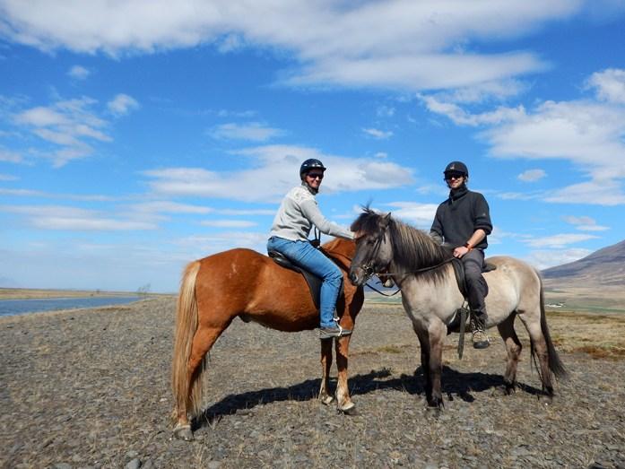 islandští koně Hestasport ve Varmahlid