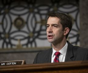 Sen. Cotton: WHO Leader 'In the Pocket of China'