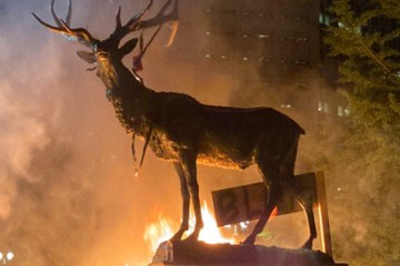 VIDEO: Rioters Set Elk Fountain on Fire in Portland