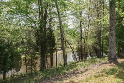 MoreRealEstate-2116Duskywing_058_Community Pond