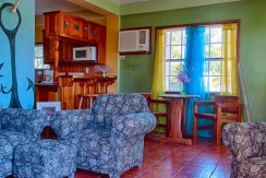 belize-beachfront-condo-open-spaces1-770x386