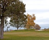 Dying Golf Courses Offer Opportunity for Investors