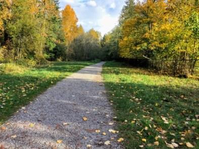 Whatcom Falls trail
