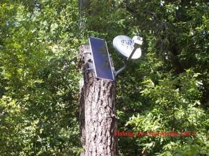 solar-panel-and-dish-on-tree-300x224