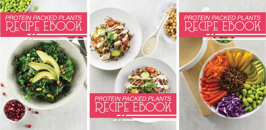 Plant based protein ebook real food mostly plants plant based protein ebook fandeluxe Gallery