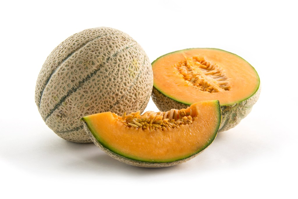 tuscan melon, melon, variety melons, healthy options, fresh fruit
