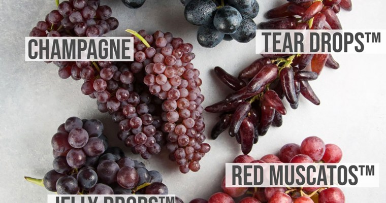 A Visual Guide to Grape Varieties