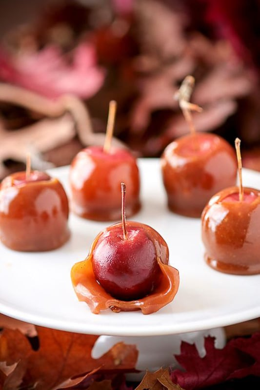 20+ Amazing Apple Recipes for Fall l trick or treat taffy crabapples