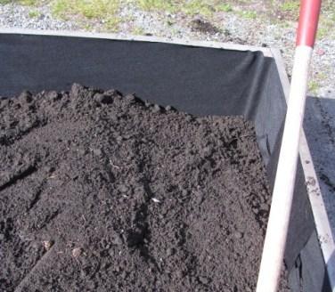 raised bed dirt