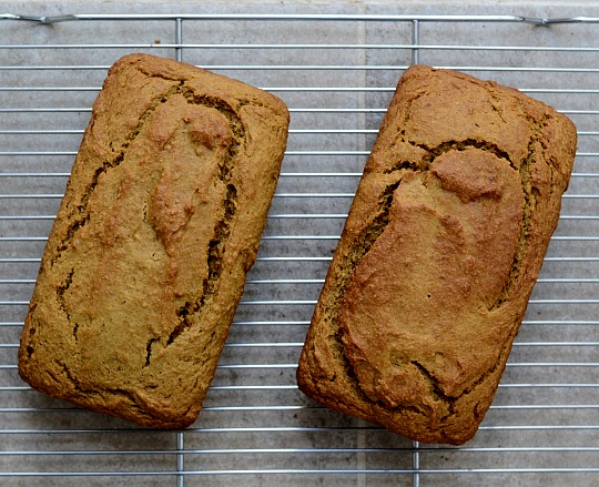 Homemade whole wheat pumpkin bread is such a delicious dessert!