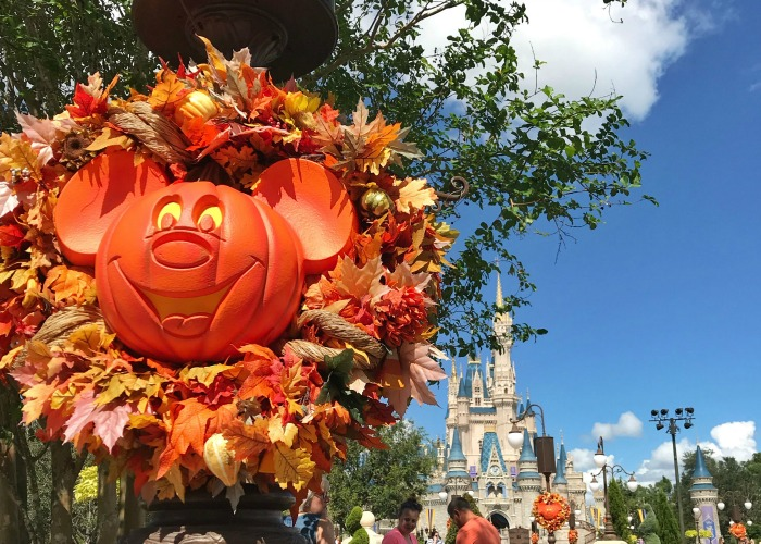 There are healthy eating options all throughout the year at Disney World.