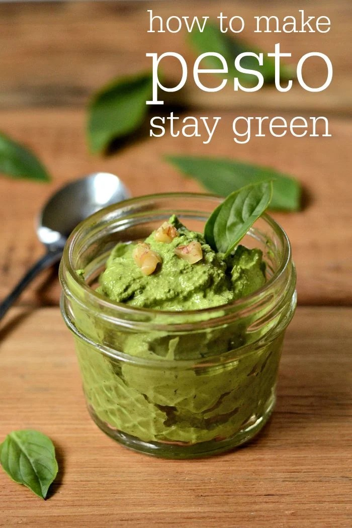 This recipe shares my tip about how to make pesto that stays bright green for several days. It's an easy recipe to make with fresh summer basil, and it freezes well.