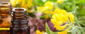 essentialoils-header-300x120 Are You Curious About Essential Oils?