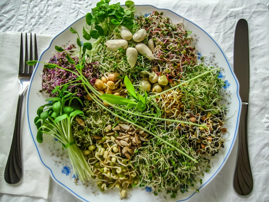 sprouts-1024x768 Bump up the Protein on your Salad with this little known SUPERFOOD!