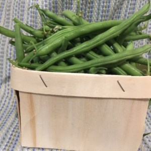 Fresh Green Beans - Real Foods Farm - Wimberley, Texas