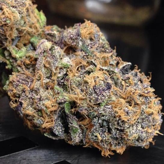 purple_urkle
