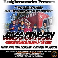 BASS ODYSSEY AT REAL VYBZ LAWN RHODEN HALL, CLARENDON JAN 2016