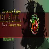 HECKLERS INC PRESENTS BECAUSE I'M BLACK CULTURE MIX PT2