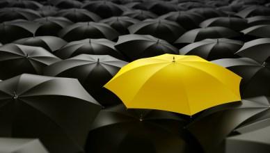 Conheça o fenômeno da conformidade social