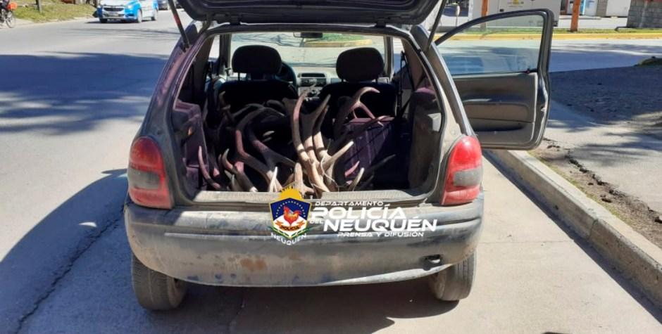 Transportaban varias astas de ciervo, se resistieron y amenazaron con un bidón con nafta y un encendedor