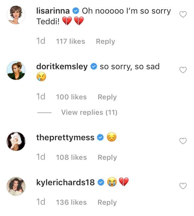 RHOBH Cast Supports Teddi Mellencamp After Dog Dies