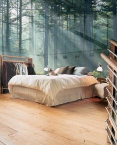 Dream Bedroom with Cat