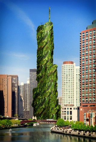 "Honorable Mention: ""Chicago's Greenwall Pride"" by Jenna Hertz"