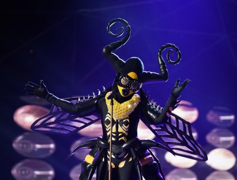 The Masked Singer Spoilers - Bee