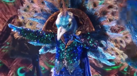 The Masked Singer Spoilers - Peacock