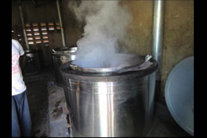 Cooking beans in a pot