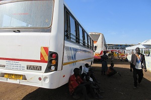 buses to transport refugees