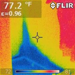 mold remediation jupiter fl