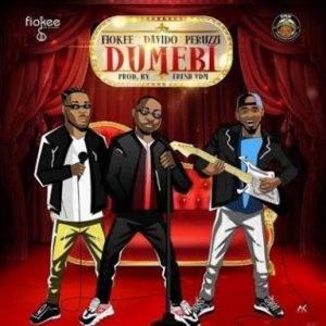 unnamed-8-300x300 download music - dumebi by fiokee ft. davido x peruzzi (lyrics & instrumental)