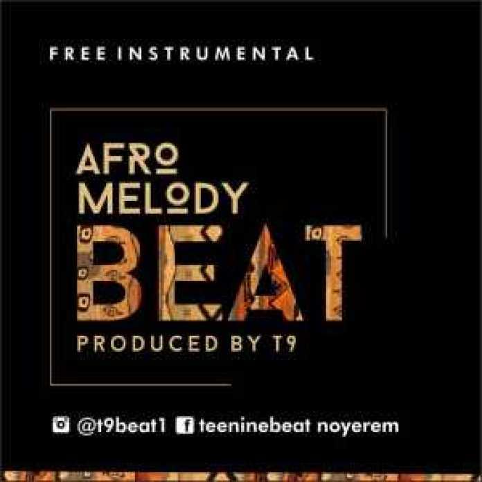 Instrumental - Afro melody (Prod. by T9)