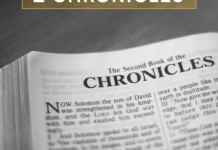 HOLY BIBLE – 1 CHRONICLES 28 : 1 – 21