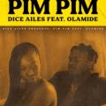 Pim Pim artwork