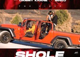 Shole cover