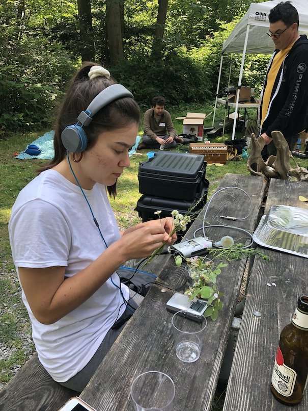 Campbient Sound Art Residency field recording