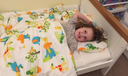 REVIEW – Gro-to-Bed Toddler Bedding