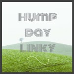 Hump Day Linky 16/8
