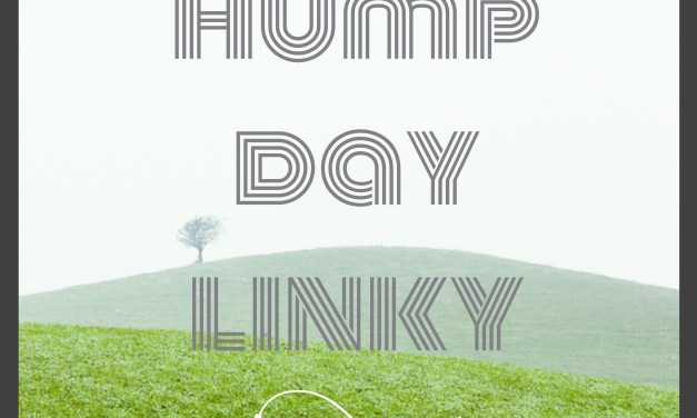 Hump Day Linky 1 – 26/4
