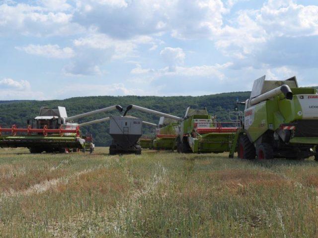 жнива на полях «Мрія Агрохолдинг»