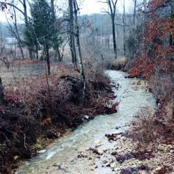 80 acre farm-62718-creek