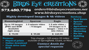 Birds_Eye_Creations_2