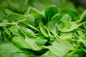 spinach safe Fruit and Vegetable for dogs