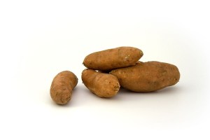 sweet potato Safe Fruit and Vegetable for dogs