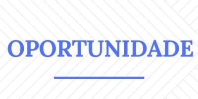 No total, 217 vagas foram atualizadas e divulgadas pelo SINE de Igarapé.